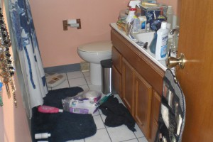A chaotic bathroom - nasty toilet, filthy floor, guilt reminders