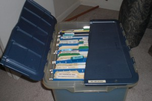 My tax filing storage tub