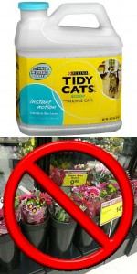 Can buy litter. Can't buy flowers.